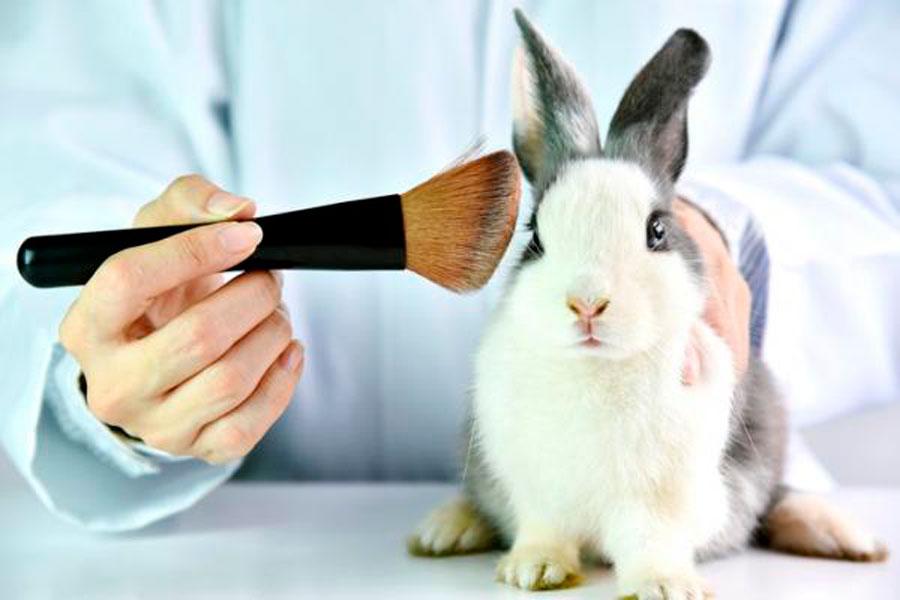 testado de productos en cosmetica